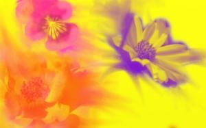 flowersjpeg1-sm