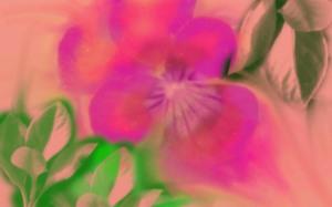 flowersjpeg2-sm